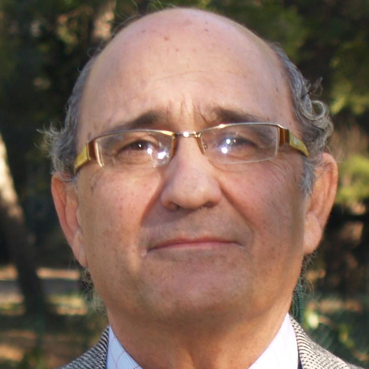 D. Andrés M. Torrubia Arenas
